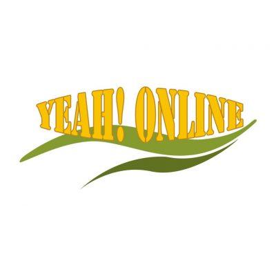 yeah online websitebouwer nederland webdesigner